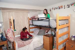 Studying on bunk beds