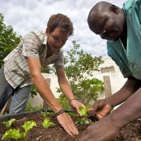 Two men working garden soil