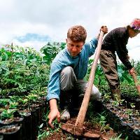 Two men tilling soil.