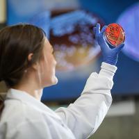 Student observes contents of a petri dish.