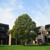 Gallery apartment surrounded by tree