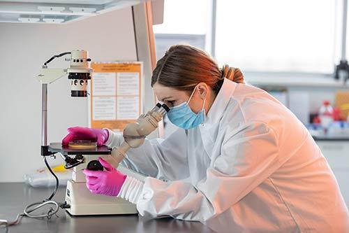 Kelli Maddock looks through microscope