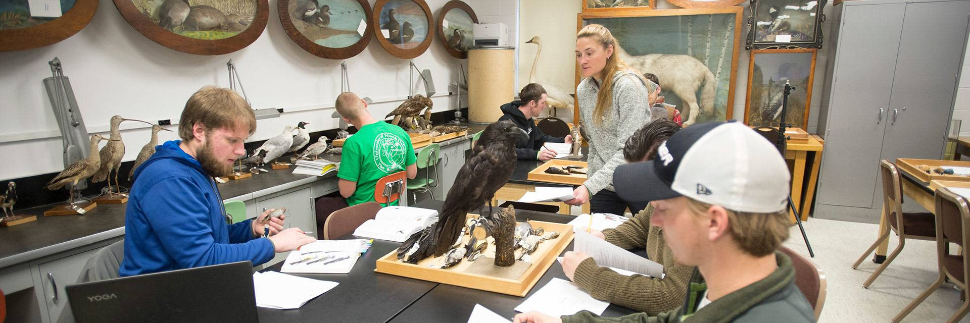 Fisheries Wildlife Biology B S Bachelor S Degree Program University Of North Dakota